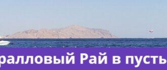 Шарм-эль-Шейх коралловый курорт
